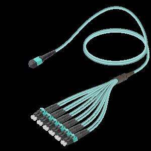 MPO Cable